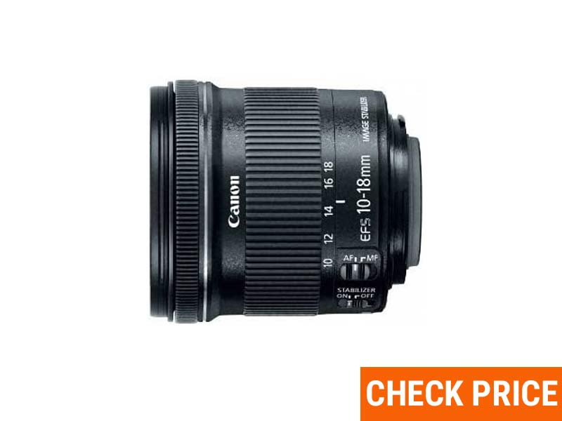 Best Budget Lens For Wildlife Photography