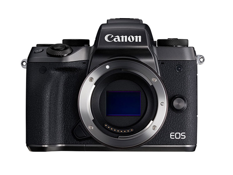 Best Camera for Filmmaking on a Budget